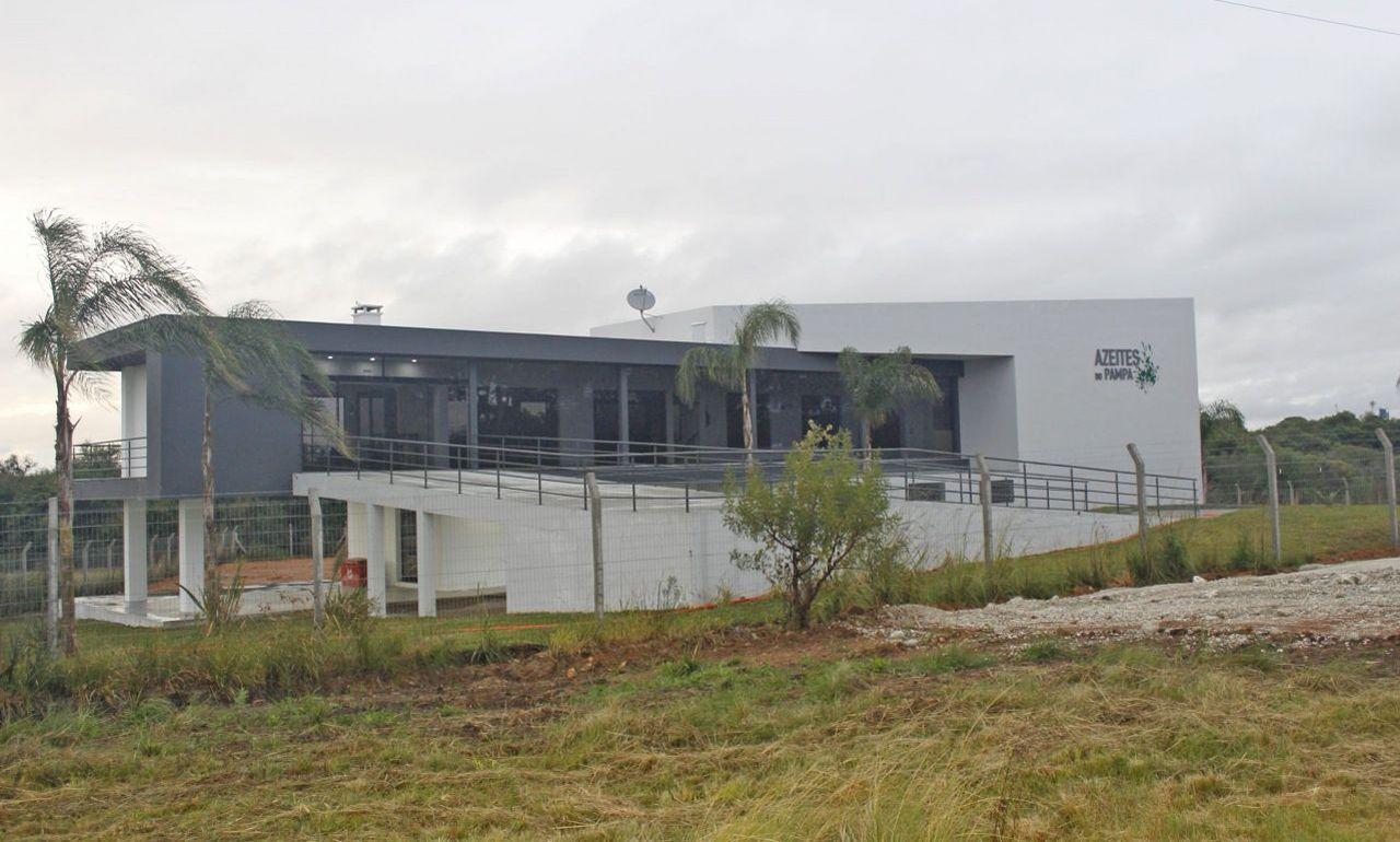 TERRAPAMPA - Primeira indústria de azeite de Bagé será inaugurada hoje